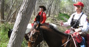 Tales from the posse: humor, horror and rescue from the Pima County Sheriff Posse