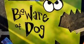 rynski talking yard art: dumb video 10 (what guard dog do)