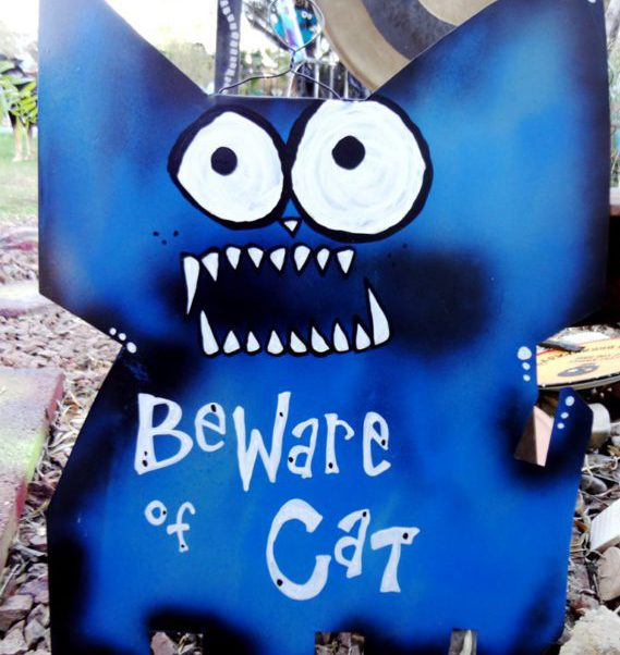 beware of cat sign