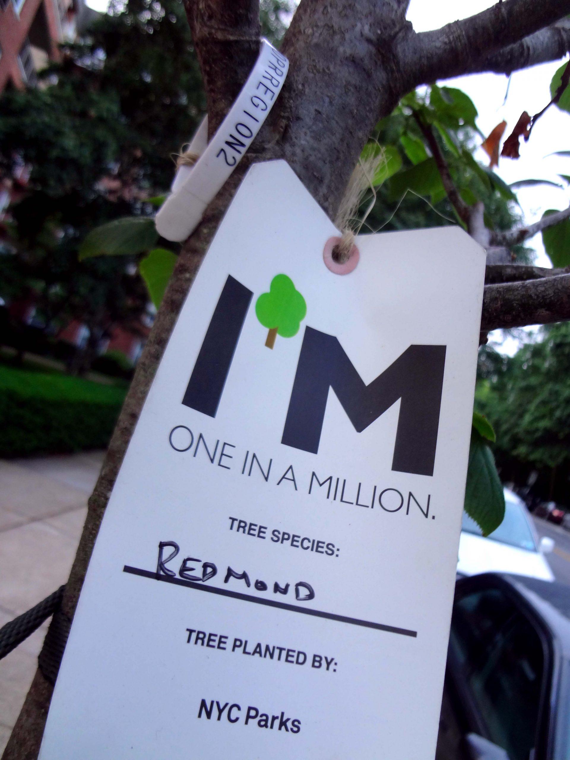 milliontree