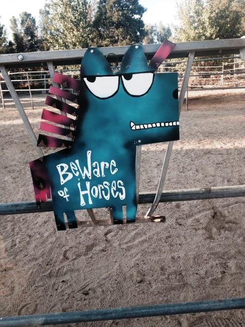horse aqua blue