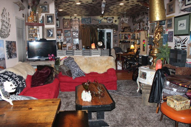 rynski tucson living room